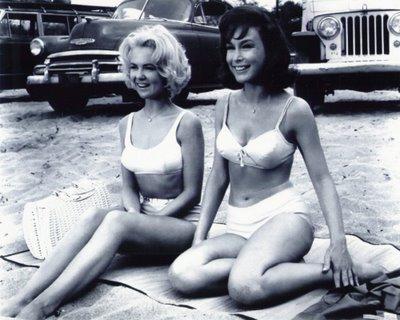 Shelley Fabares, Barbara Eden  Ride the Wild Surf  (1964)